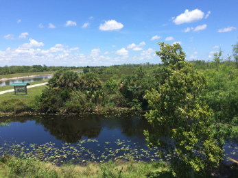 The Sandhill Crane Access Park in Palm Beach Gardens offers views of the Loxahatchee Slough and has a trail that connects to Riverbend Park in Jupiter.
