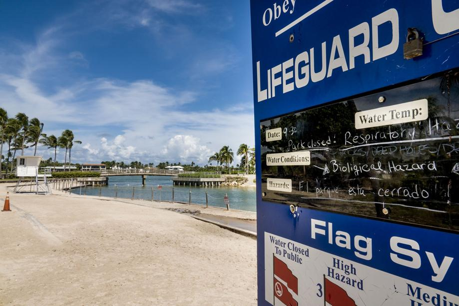 New Rare Red Tide Found In Palm Beach County But Beaches Open Soon