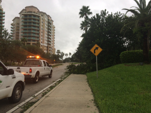 Palm Beach Gardens employees early Friday morning clear vegetation that fell across the sidewalk during Hurricane Matthew. (Sarah Peters/The Palm Beach Post)